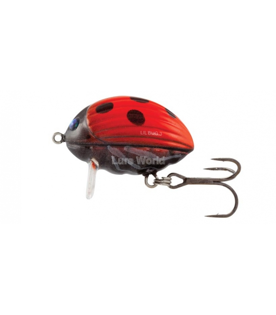 Salmo Lil' Bug 2F - floating, 2cm - Colour Options Available